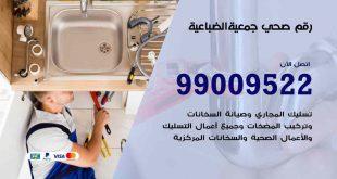 رقم صحي جمعية الضباعية